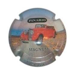 Pinario 15327 X 061116 Magnum