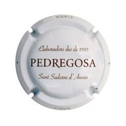 Castelo de Pedregosa X 130365
