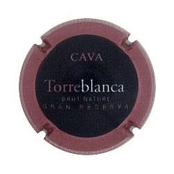 Masia Torreblanca X 128859