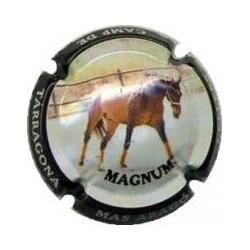 Cellers Camp de Tarragona 17117 X 061760 Magnum