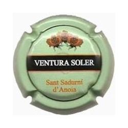 Ventura Soler 22473 X 098971