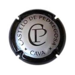Castelo de Pedregosa 04813 X 03778
