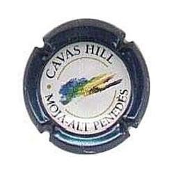 Cavas Hill 02488 X 000344