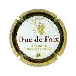Duc de Foix 02176 X 000605