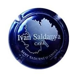 Ivan Saldanya 03133 X 001863 Azul