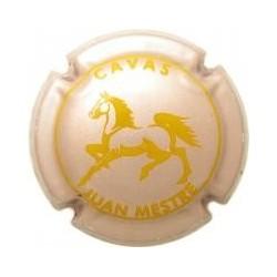 Juan Mestre 12839 X 039788