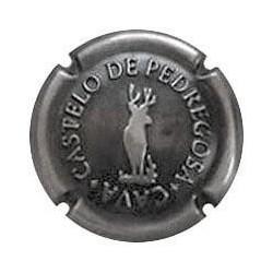 Castelo de Pedregosa X 114669 Plata sin contraste