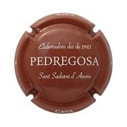 Castelo de Pedregosa X 130348