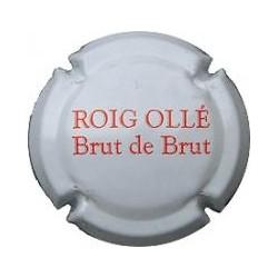 Roig Ollé 14819 X 045340