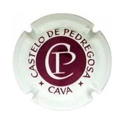 Castelo de Pedregosa 01307...