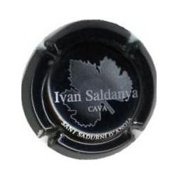 Ivan Saldanya 04307 X 020219