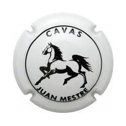 Juan Mestre 10813 X 023423