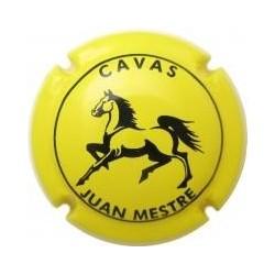 Juan Mestre 10815 X 023430