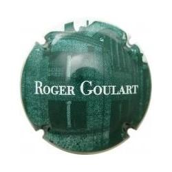 Roger Goulart 02653 X 000504