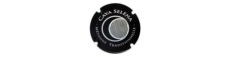 Vinya Selena - (Maset del Lleó)