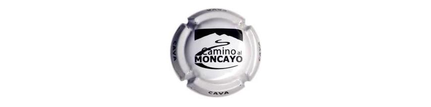 Camino al Moncayo