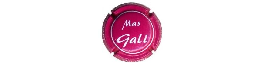 Mas Galí