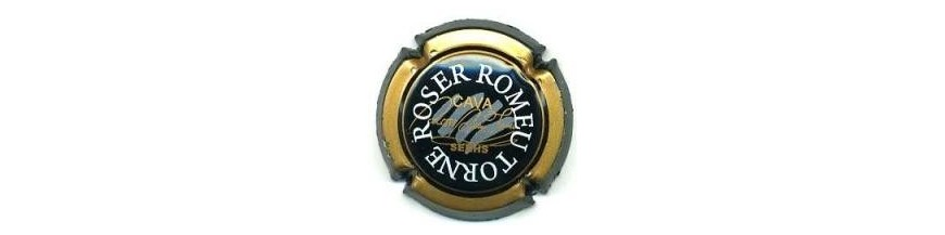 Roser Romeu Torné