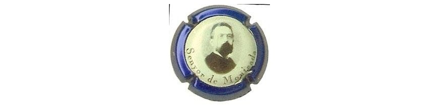 Senyor de Montcada